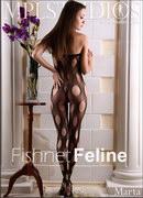 Fishnet Feline