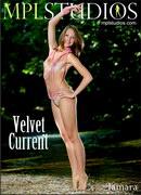 Velvet Current