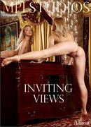 Inviting Views