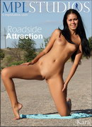 Roadside Attraction