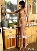 Dacha Spring