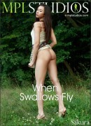 When Swallows Fly