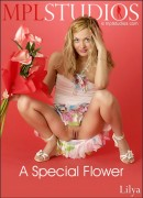 A Special Flower