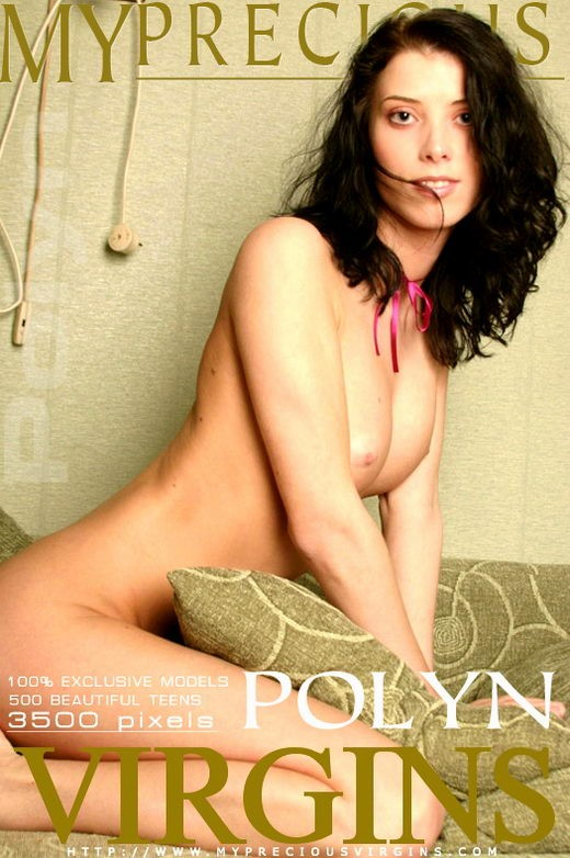 Polyn - for MPV MODELS