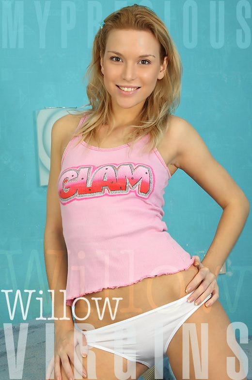 Willow - for MPV MODELS