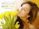 Erotic Tulips