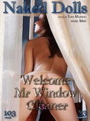 Welcome Mr Window Cleaner