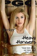 Heavy Hangers