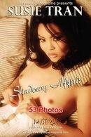 Shadowy Affair