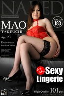 Issue 183 - Sexy Lingerie