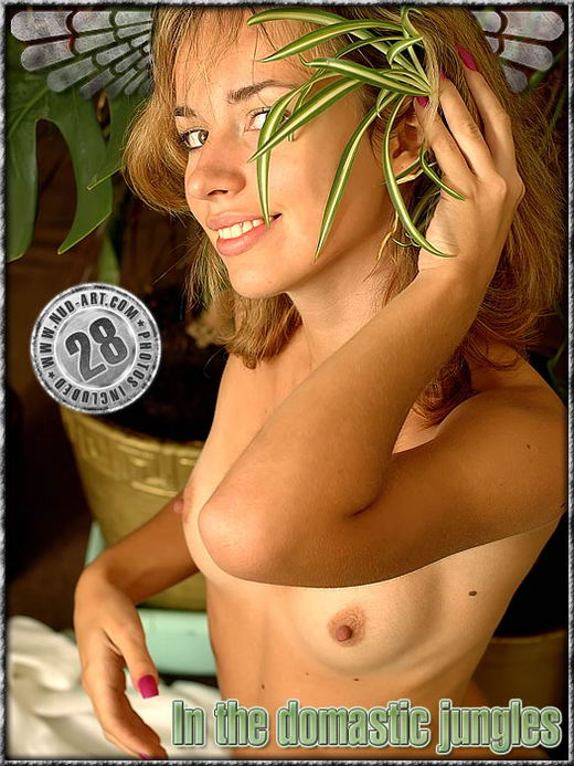 Sasha - `In The Domastic Jungles` - by Dan Sway for NUD-ART