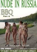 BBQ - Part VI