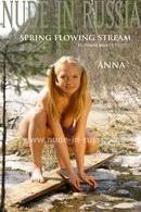 Spring Flowing Stream