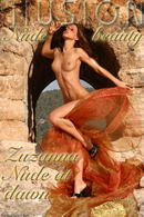 Zuzanna in Nude at dawn gallery from NUDEILLUSION by Laurie Jeffery