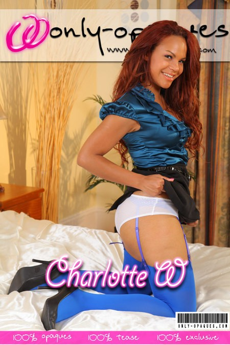 Charlotte W - for ONLY-OPAQUES COVERS