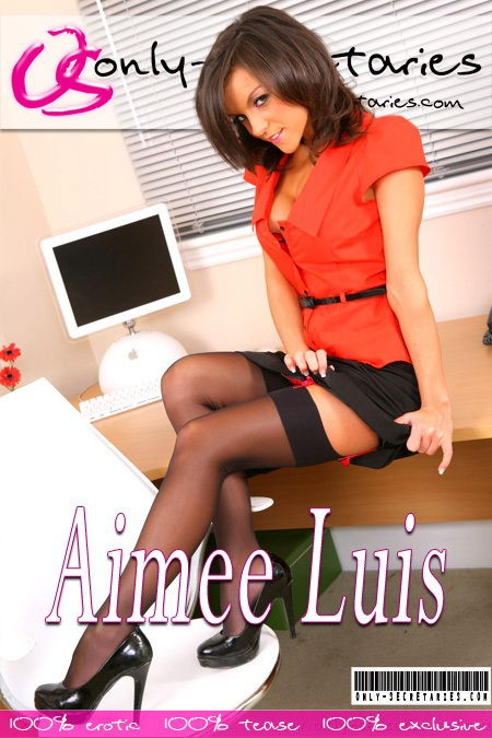 Aimee Luis - for ONLYSECRETARIES COVERS