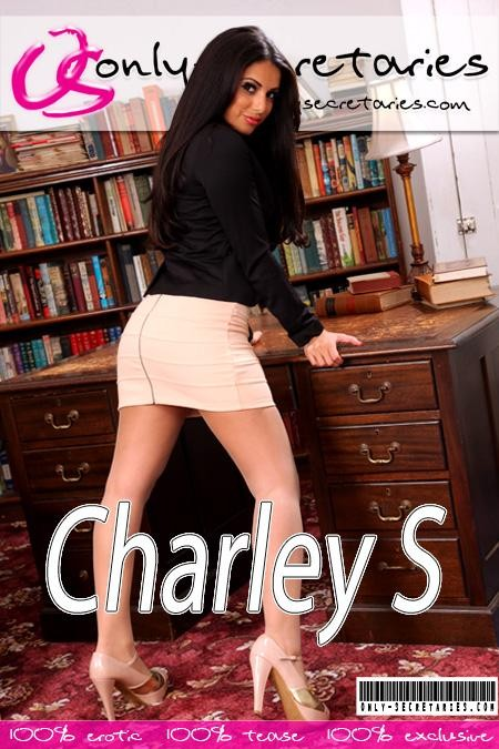 Charley S - for ONLYSECRETARIES COVERS