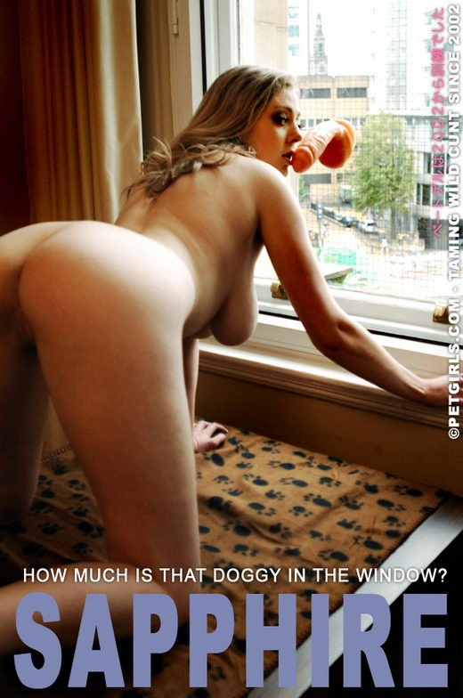 Sapphire - `How much is that Doggy in the window?` - for PETGIRLS