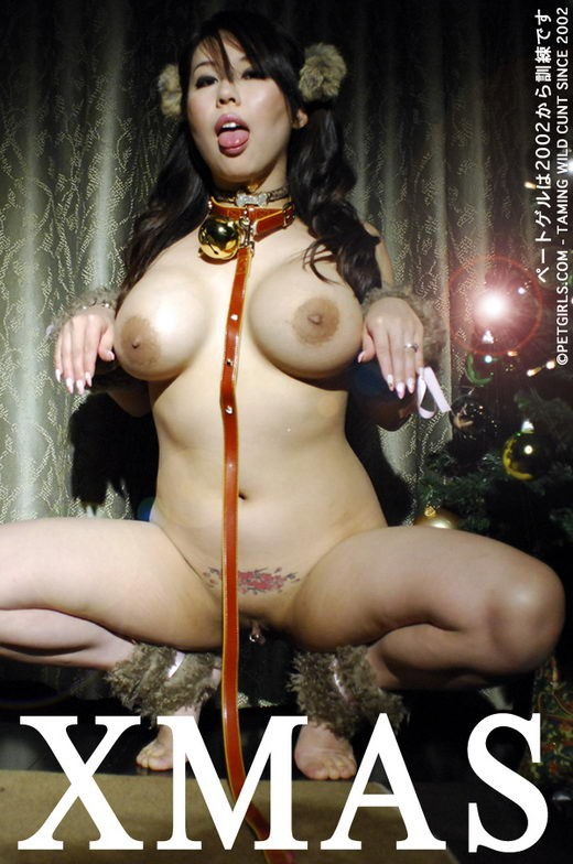 `Xmas` - for PETGIRLS