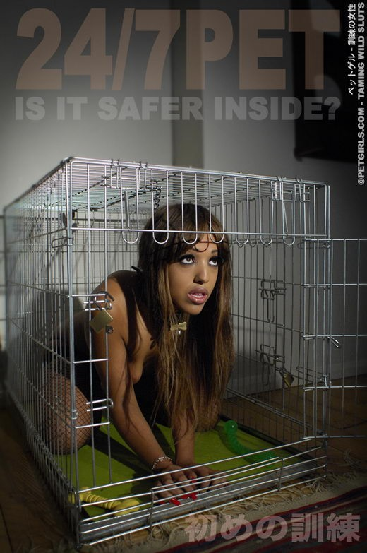 `24/7 Pet is it safer inside?` - for PETGIRLS