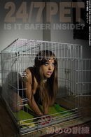 24/7 Pet is it safer inside?