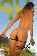 Tindra - The Green Zone 2