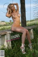 Tindra - The Bench on the Fields 2