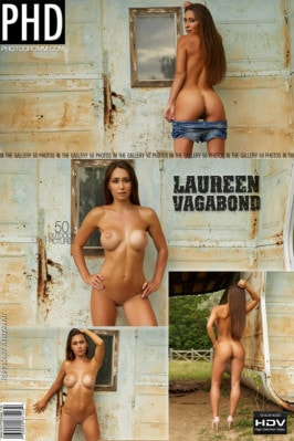 Movies adult extreme taboo dvds