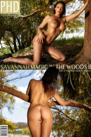 Savannah in Magic in the Woods II gallery from PHOTODROMM by Filippo Sano