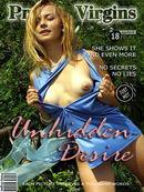Unhidden Desire