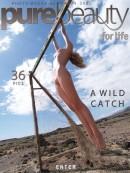 A Wild Catch