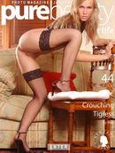 Crouching Tigress