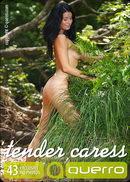 Tender Caress