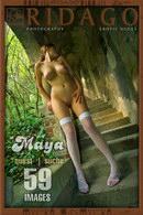 Maya - Quest