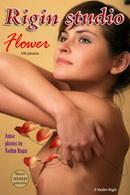 Anna - Flower