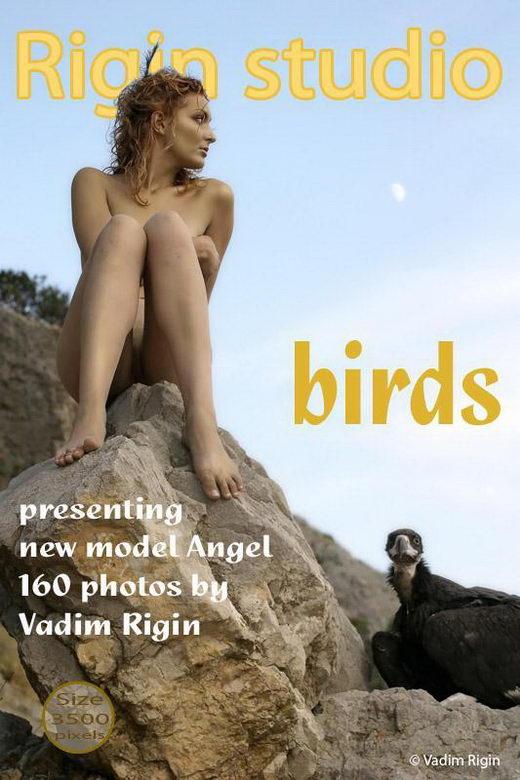 Angel - `Birds` - by Vadim Rigin for RIGIN-STUDIO
