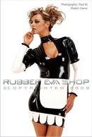 Deluxe Rubber Maid's Uniform