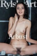 Arbust