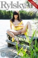 Colokon