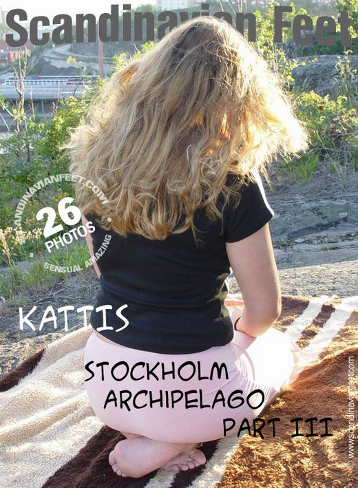 Kattis - `Stockholm Archipelago Part III` - for SCANDINAVIANFEET