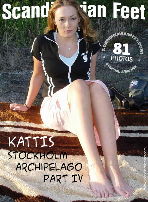 Kattis - `Stockholm Archipelago Part IV` - for SCANDINAVIANFEET