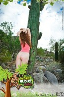 Elena - Elena Cactus Desert