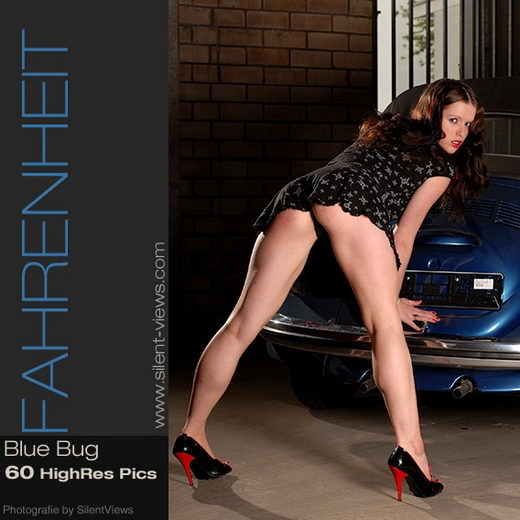 Fahrenheit - `#16 - Blue Bug` - for SILENTVIEWS