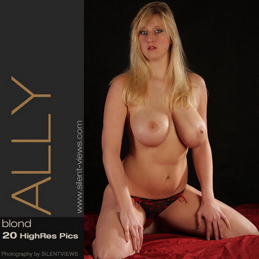 Ally - `#260 - Blond` - for SILENTVIEWS