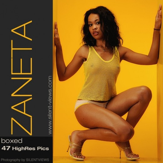 Zaneta - `#667 - Boxed` - for SILENTVIEWS