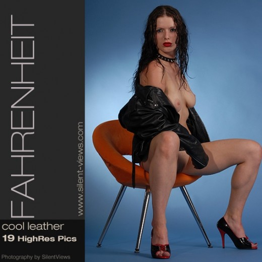 Fahrenheit - `#546 - Cool Leather` - for SILENTVIEWS2