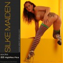 #338 - Socks