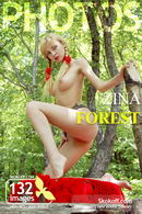 Zina - Forest