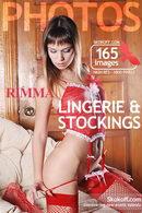 Lingerie & Stockings