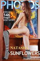 Natasha - Sunflowers